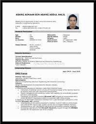 Resume Resume Form Sample