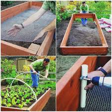 square foot garden box beautiful inspirational square foot gardening in raised beds