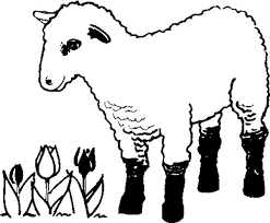 Small Picture lamb coloring sheet lamb coloring pages bestofcoloring pictures