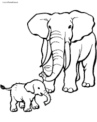 Elephant Baby Drawing At Getdrawingscom Free For Personal Use