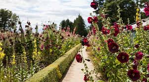 Small Picture Historic Gardens to Visit English Heritage