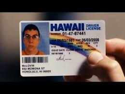 Fake Id Youtube - Superbad hd Mclovin
