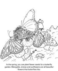 Disegno Di Farfalle Da Colorare Disegni Da Colorare E Stampare Gratis