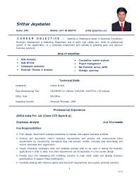 Business Analyst Cv