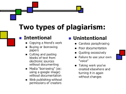 non plagiarized essays