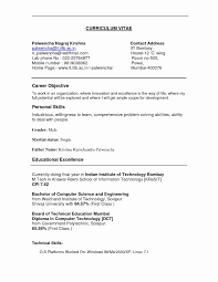Sample Resume Government Jobs Resume Format For Government Job New Sample Resume For Philippine 76