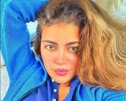 إجهاض ريهام حجاج جنينها الأول من محمد حلاوة ومصدر مقرب يكشف السبب » وكالة  الوطن الإخبارية