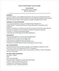 Junior Project Manager Resume Resume For Manager Position Many