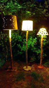 birch tree lamp lighted