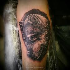татуировка волк на предплечье работа одного сеанса в полной
