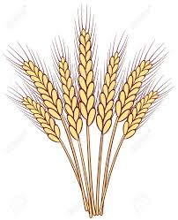 Wheat Clipart Clipart Station