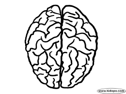 Small Picture Draw Brain Coloring Page 17 With Additional Line Drawings with