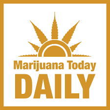 Marijuana Today Daily