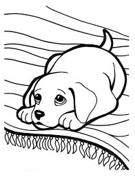 Super Cute Puppy Coloring Page Printable Pages Of Puppies