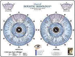 Iridology Chart Pdf Iridology Chart Fresh Iridology Pdf Buscar Con Google Iris T
