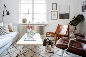 small room furniture designs. Mismatched Furniture And A Dog In Small Living Room Designs C