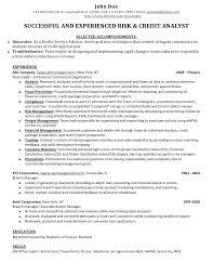 Credit Risk Analyst Sample Resume Credit Administration Sample Resume Risk Analyst Resumes Credit 2