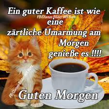 Guten Morgen Mein Schatz Spruch Gbpics