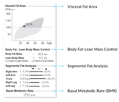 Visceral Fat Chart Understand The Inbody Result Sheet Inbody Usa