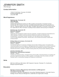 Resume Templates Professional Profiles Examples For Resumes Profile