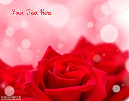 Quotes About Roses And Beauty Best of Write Quote On Red Rose Beauty Picture