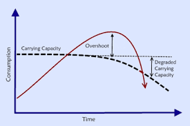 Carrying Capacity And Overshoot
