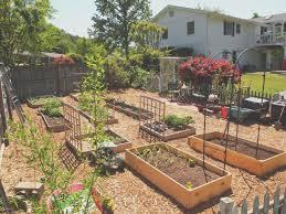 outdoor design front yard veggie garden gardenerd then outdoor exciting gallery front yard veggie garden