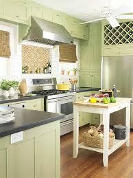 Green Kitchen Cabinet Doors Cabinet Kitchen Cabinet Door Hinges