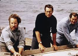 Matt Hooper, Chief Martin Brody, Quint | Jaws movie, Movie facts ...