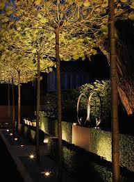 outdoor tree lighting ideas. Outdoor Up Lighting For Trees 25 Cute Tree Ideas On Pinterest A