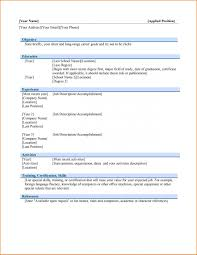 Professional Resume Word Template Custom Professional Resume Template Microsoft Word