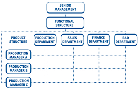Pros And Cons Matrix Organisational Structure