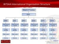 Ceo Coo Org Chart Ceo Chart