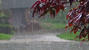 Image result for pictures of monsoon rains