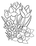 Фото цветов для раскраски 159