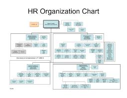 Human Resource Organizational Structure Chart Hr Structure Chart Www Bedowntowndaytona Com