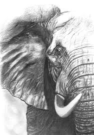 elephant pencil drawing drawing elephant for alabama by hae kim on alabama elephant wall art with elephant for alabama drawing by hae kim