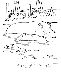 Wild Animal Coloring Page River Hippo Coloring Page Applique