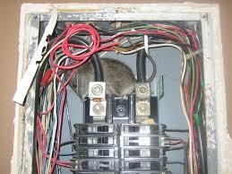 rat photograph 010 inside a circuit breaker box circuit breaker box lock Circuit Breaker Box #46
