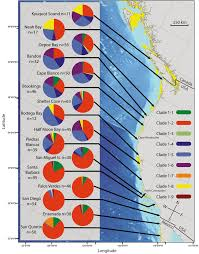 California Rockfish Chart Sampling Locations And Sample Size For Vermilion Rockfish