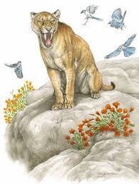 entelodont was a animal that lived in the cenozoic period  extinction animals essay cat extinction of animals essay allow us to take care of your master thesis order a original plagiarism thesis you could