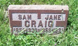 "Margaret Delana Jane ""Jane"" Speer Craig (1859-1921) - Find A Grave Memorial"