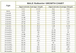 Height Wise Weight Chart In Kg Circumstantial Fetus Weight Fetal Weight Chart Kg Seven