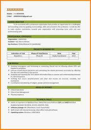 Professional Free Resume Templates Free Executive Resume Templates Microsoft Word Professional 61