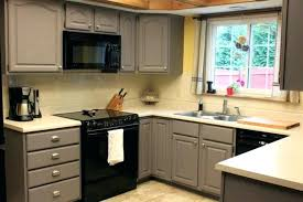 Small Picture Best Type Of Paint For Kitchen Cabinets Uk Paint For Kitchen