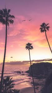 sunset homescreens Tumblr