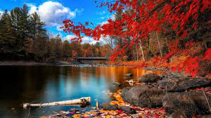 Autumn Water Wallpapers - Top Free ...