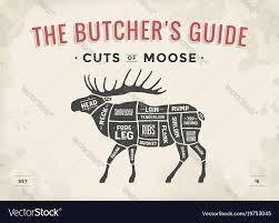 Butcher Diagram Scheme Moose Vector Image