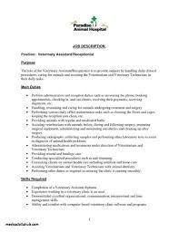 New Sample Rhgustavopadillacomco New Resume Examples For Spa