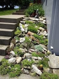 Rock Garden Plans Designs Diy Rock Garden Designs Rock Garden Design Succulent Rock